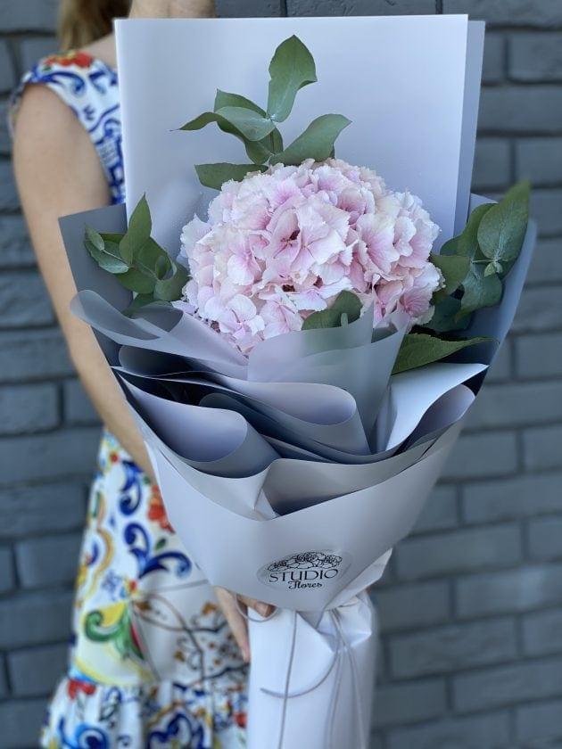 Compliment with hydrangea 1 – Flower shop STUDIO Flores