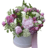 Blossoming garden – Flower shop STUDIO Flores