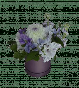 Снежная Королева – Flower shop STUDIO Flores