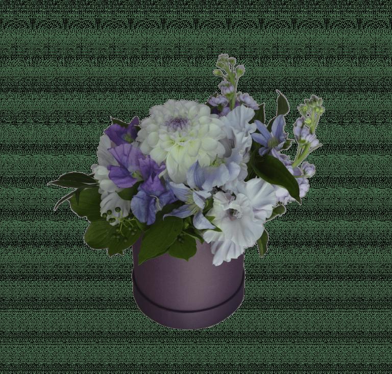 Снежная Королева – Интернет-магазин цветов STUDIO Flores