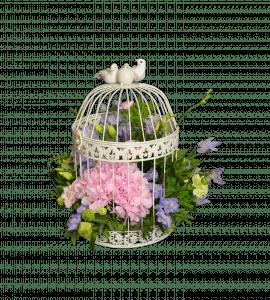 Букет Квітуча клітина – Flower shop STUDIO Flores