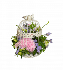 Букет Квітуча клітина – Интернет-магазин цветов STUDIO Flores