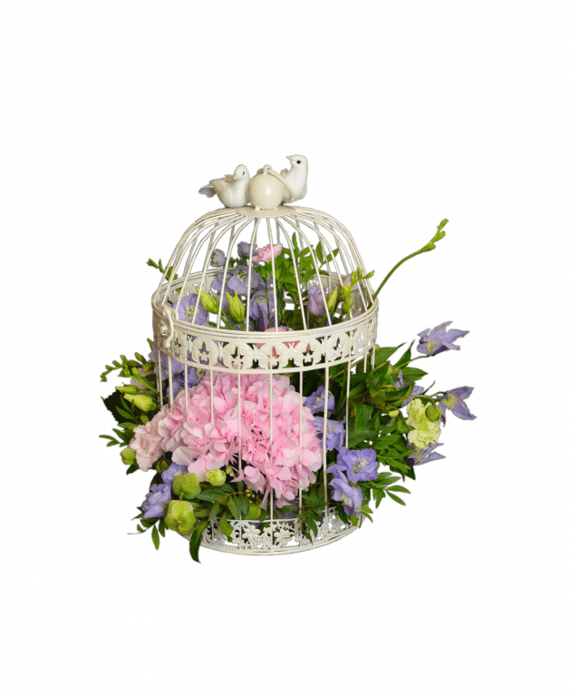 Blossoming cage – Flower shop STUDIO Flores