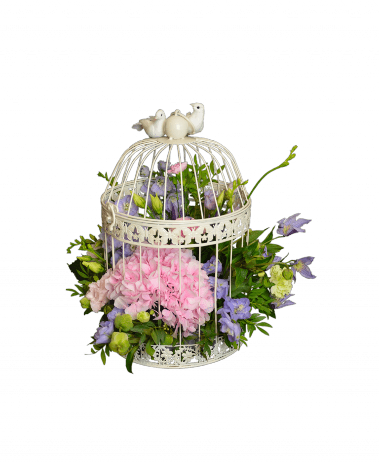 Цветущая клетка – Интернет-магазин цветов STUDIO Flores