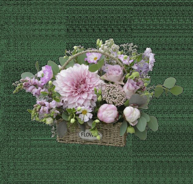 Сны Аризоны – Интернет-магазин цветов STUDIO Flores