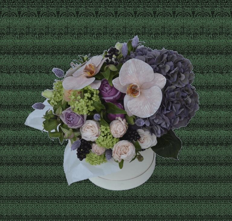 Розкіш орхідеї – Інтернет-магазин квітів STUDIO Flores