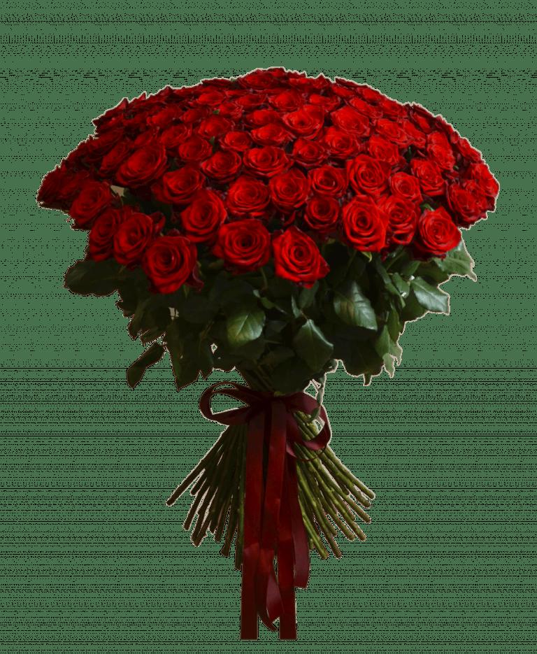 101 красная роза – Интернет-магазин цветов STUDIO Flores