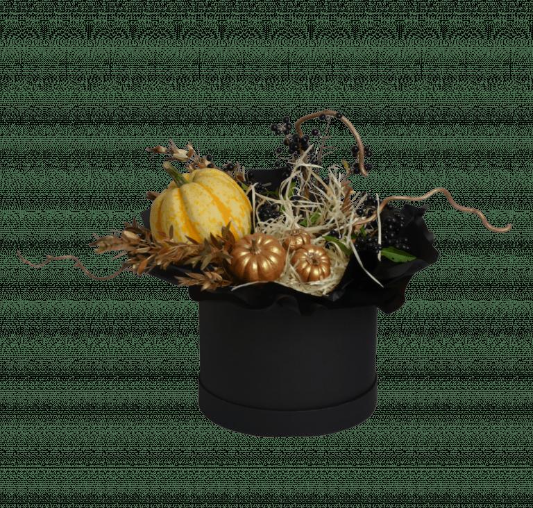 Ведьмовской горщик – Інтернет-магазин квітів STUDIO Flores