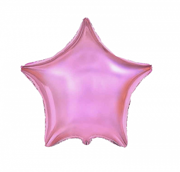 Зірка рожева – Інтернет-магазин квітів STUDIO Flores