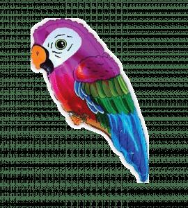 Папужка – Інтернет-магазин квітів STUDIO Flores