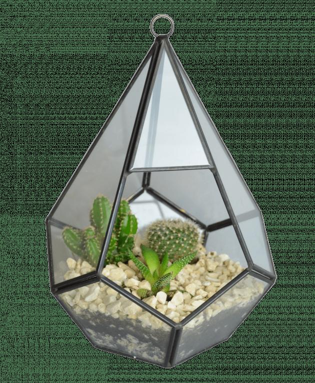 Флораріум Тіфані – Інтернет-магазин квітів STUDIO Flores