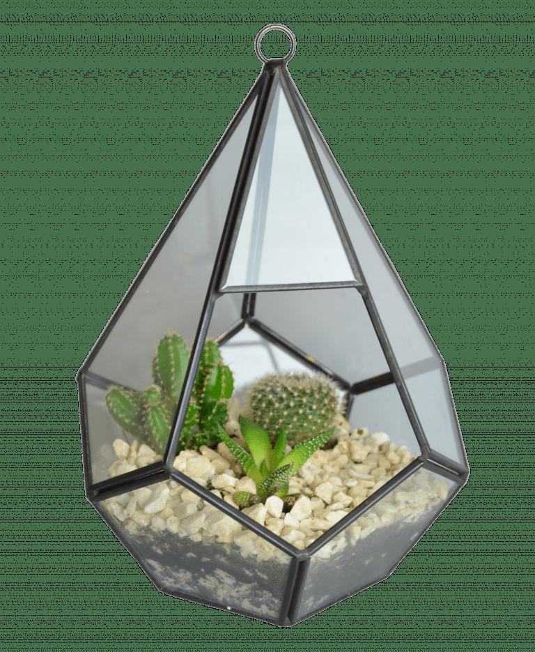 Флорариум Тиффани – Интернет-магазин цветов STUDIO Flores