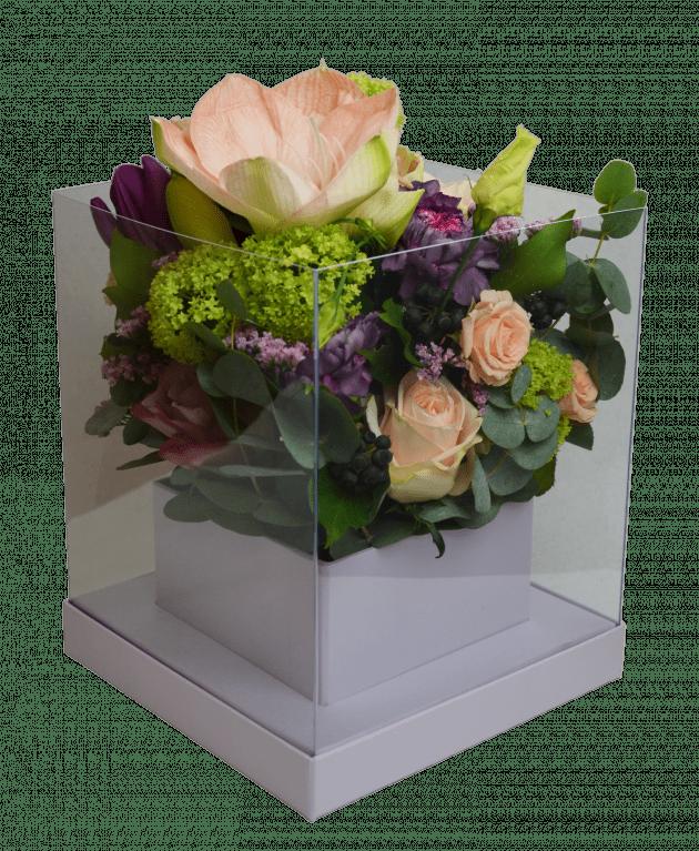 Грация – Интернет-магазин цветов STUDIO Flores