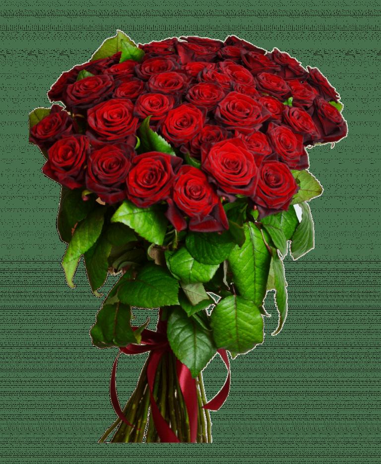 шикарный букет из алых роз фото очередной