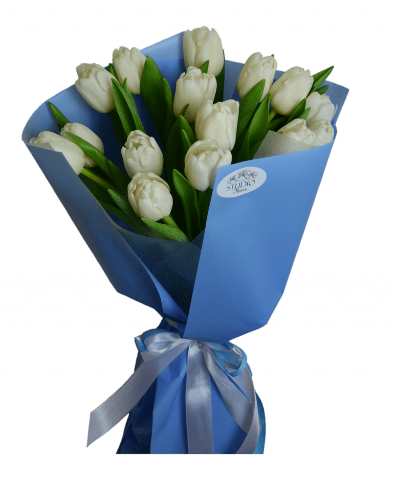 15 white tulips – Flower shop STUDIO Flores