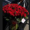 Букет пятьдесят одна и сто одна роза Эль Торо – Интернет-магазин цветов STUDIO Flores