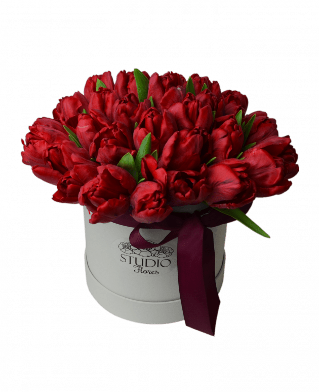 Розкіш тюльпанів – Інтернет-магазин квітів STUDIO Flores