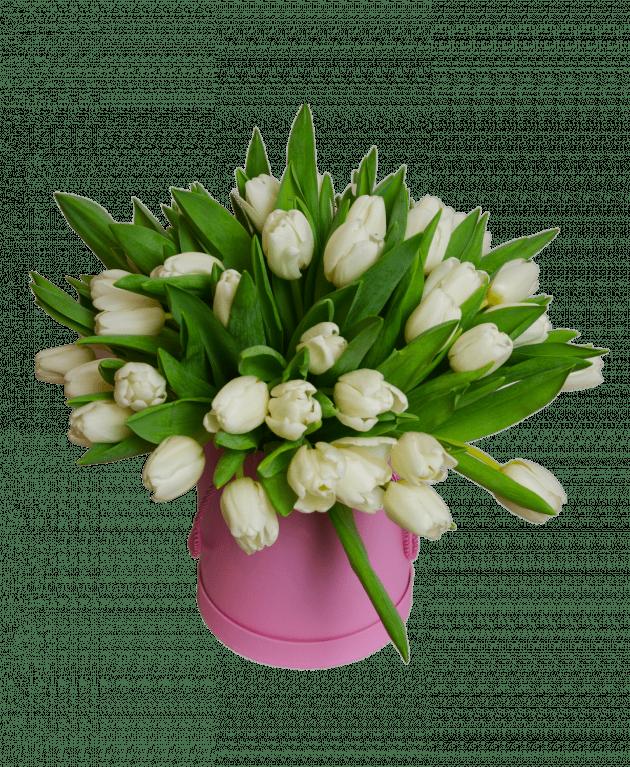 Барбі – Інтернет-магазин квітів STUDIO Flores