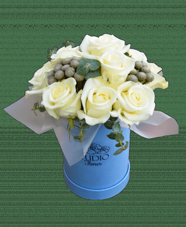 Місячна соната – Інтернет-магазин квітів STUDIO Flores