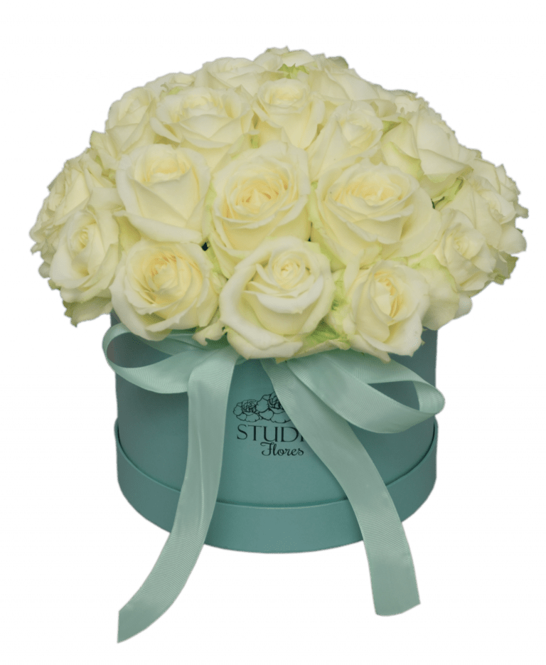 Athena – Flower shop STUDIO Flores