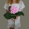 Рожева гортензія – зображення 2 – Інтернет-магазин квітів STUDIO Flores