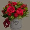 Строптивая роза – Интернет-магазин цветов STUDIO Flores