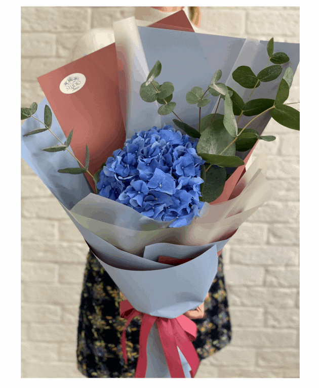 Букет-комплімент з гортензією 2 – Інтернет-магазин квітів STUDIO Flores