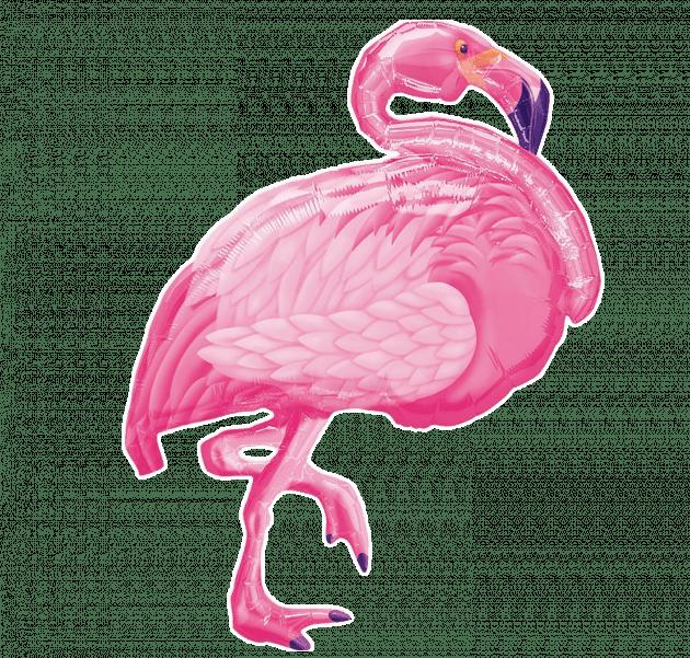 Розовый фламинго – Интернет-магазин цветов STUDIO Flores
