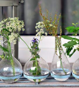 Полевые цветы в вазах