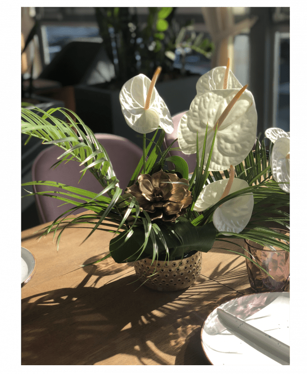 Оформление офиса цветами – Интернет-магазин цветов STUDIO Flores