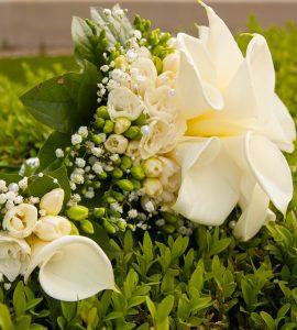 Цветы на фоне зелени