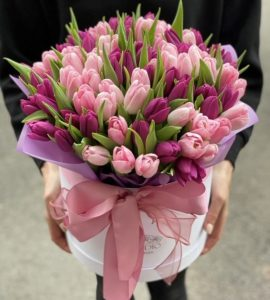 101 tulips in a box