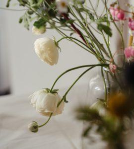 Засущенные цветы